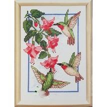 Hummingbirds & Fuchsia Counted Cross Stitch Kit 5 x 7 Dimensions 6642 c2682 - $12.99