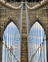 Brooklyn Bridge  - $40.00+