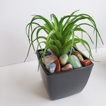Faux Air Plant with Natural Polished Stones in Planter, Tumbled Rocks, Airplant image 3