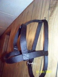 Medium H Style Dog Harness Metal Hardware USA Made