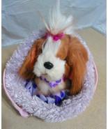 Pucchi Pups Brown white Dog Kids Stuffed Animal toy w Clothes Purple Dog... - $15.00