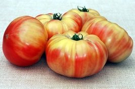 30 Seeds of Mammoth German Gold - Tomatoes Bi-Color - $15.84