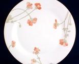 Rd harmony dinner plate thumb155 crop