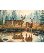 Deer Reflections  Cross Stitch Pattern***LOOK*** - $4.95
