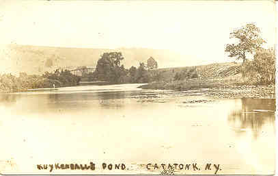 Primary image for Kykedall Pond Catatonk New York Vintage Post Card