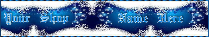 Web Banner Blue and white custom designed 46a