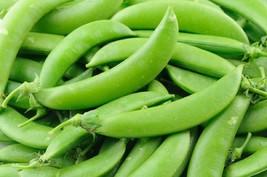 Pea Super Sugar Snap Non GMO Heirloom Garden Vegetable Seeds Sow No GMO®... - $4.64+