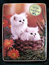 Vintage CARRS BISCUITS Cookie Tin WHITE KITTENS CATS Souvenir Collector  - $14.95