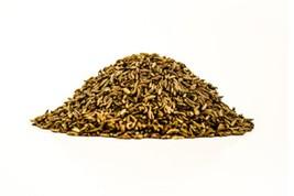 Caraway Non GMO Culinary Garden Herb / Spice Heirloom Seeds Sow No GMO® USA - $1.97+