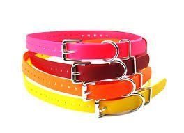 "Educator E Collar Genuine 3/4"" Biothane Replacement Straps, all colors Fits: BL-"