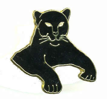 12 Pins - BLACK PANTHER , hat lapel pin #355 Bonanza