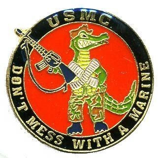 12 Pins - DONT MESS WITH A MARINE , usmc pin 739