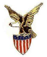 12 Pins - EAGLE WITH AMERICAN FLAG SHIELD , usa pin 630 - $9.50
