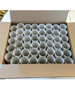 Toilet Paper Rolls Standard Size CRAFT ART PROJECT LOT of 46 Empty White... - $9.89