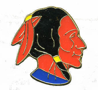 12 Pins - INDIAN , native american hat lapel pin #231