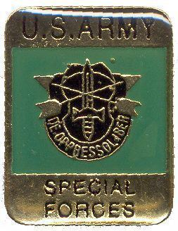 12 Pins - US ARMY SPECIAL FORCES , pin 583
