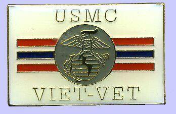 12 Pins - USMC VIET VET vietnam war vet marine pin 736 Bonanza