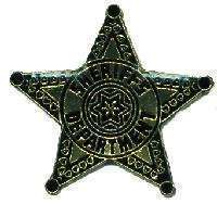 12 Pins - SHERIFFS DEPARTMENT , sheriff badge pin #4138