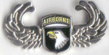 12 Pins - 101ST AIRBORNE wings screaming eagles pin 459