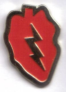 12 Pins - 25TH INFANTRY , hat lapel pin sp484 Bonanza