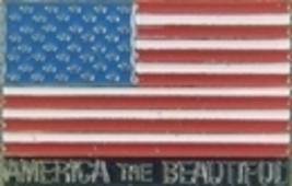 12 Pins - AMERICA THE BEAUTIFUL american flag pin sp136 - $18.00
