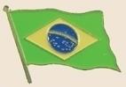 12 Pins - BRAZIL , flag hat lapel badge pin sp196 Bonanza