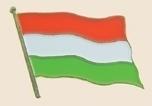 12 Pins - HUNGARY , flag hat lapel badge pin sp222