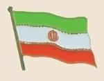 12 Pins - IRAN , iranian flag lapel badge pin sp225