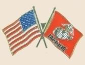 12 Pins - MARINE & AMERICAN FLAGS usmc us flag pin p391