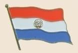 12 Pins - PARAGUAY , flag hat lapel badge pin sp247