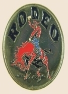 12 Pins - RODEO w/ Horse & Rider , hat lapel pin sp148 image 1