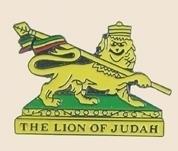12 Pins - THE LION OF JUDAH , hat lapel pin sp118
