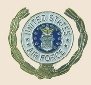 12 Pins - US AIR FORCE , usaf gold leaf pin sp375