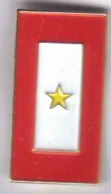 12 Pins - YELLOW STAR BANNER mourning death pin sp492b