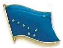 ALASKA - Wholesale lot 12 state flag lapel pins ep502