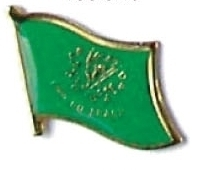 ERIN GO BRAGH - Wholesale lot 12 flag lapel pins ef114