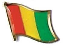 GUINEA - Wholesale lot of 12 flag hat lapel pins ef100