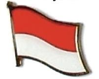 INDONESIA - Wholesale lot 12 flag hat lapel pins ef109