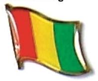 MALI - Wholesale lot of 12 flag hat lapel pins ef148
