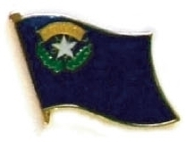 NEVADA - Wholesale lot 12 state flag lapel pins ep529