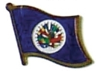 Organization of American States O.A.S 12 flag pins 178
