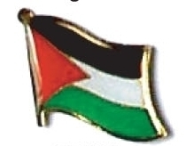 PALESTINE - Wholesale lot 12 flag hat lapel pins ef181