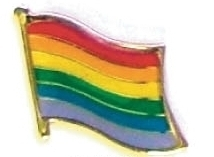 RAINBOW - Wholesale lot of 12 flag hat lapel pins ef261 image 1