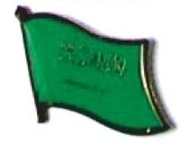 SAUDI ARABIA - Wholesale lot 12 flag lapel pins ef205