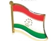 TAJIKISTAN - Wholesale lot 12 flag hat lapel pins ef229