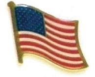 UNITED STATES OF AMERICA- 12 american flag pins ef246