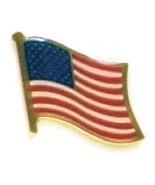 UNITED STATES OF AMERICA- 12 american flag pins ef246 - $18.00