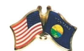 USA / MONTANA - Lot 12 state flag friendship pins ec527