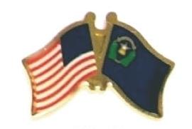 USA / NEVADA - Lot 12 state flag friendship pins ec529