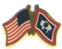 USA / WYOMING - Lot 12 state flag friendship pins ec551